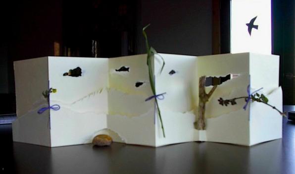 Nance's prairie walk book